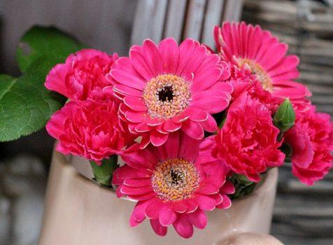 マゼンダ(ローズピンク)のお花